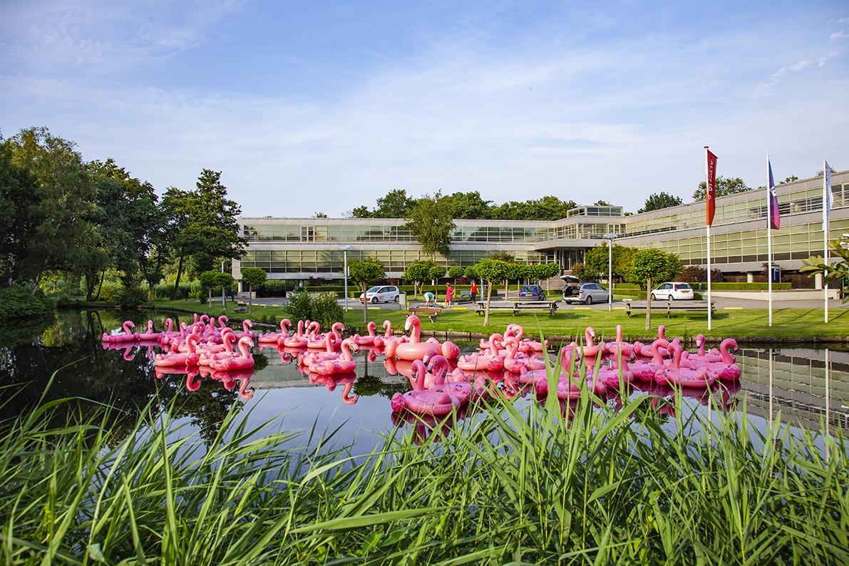 GS1 content flamingo actie