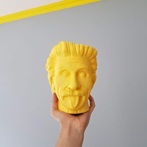 merk archetype sage Einstein