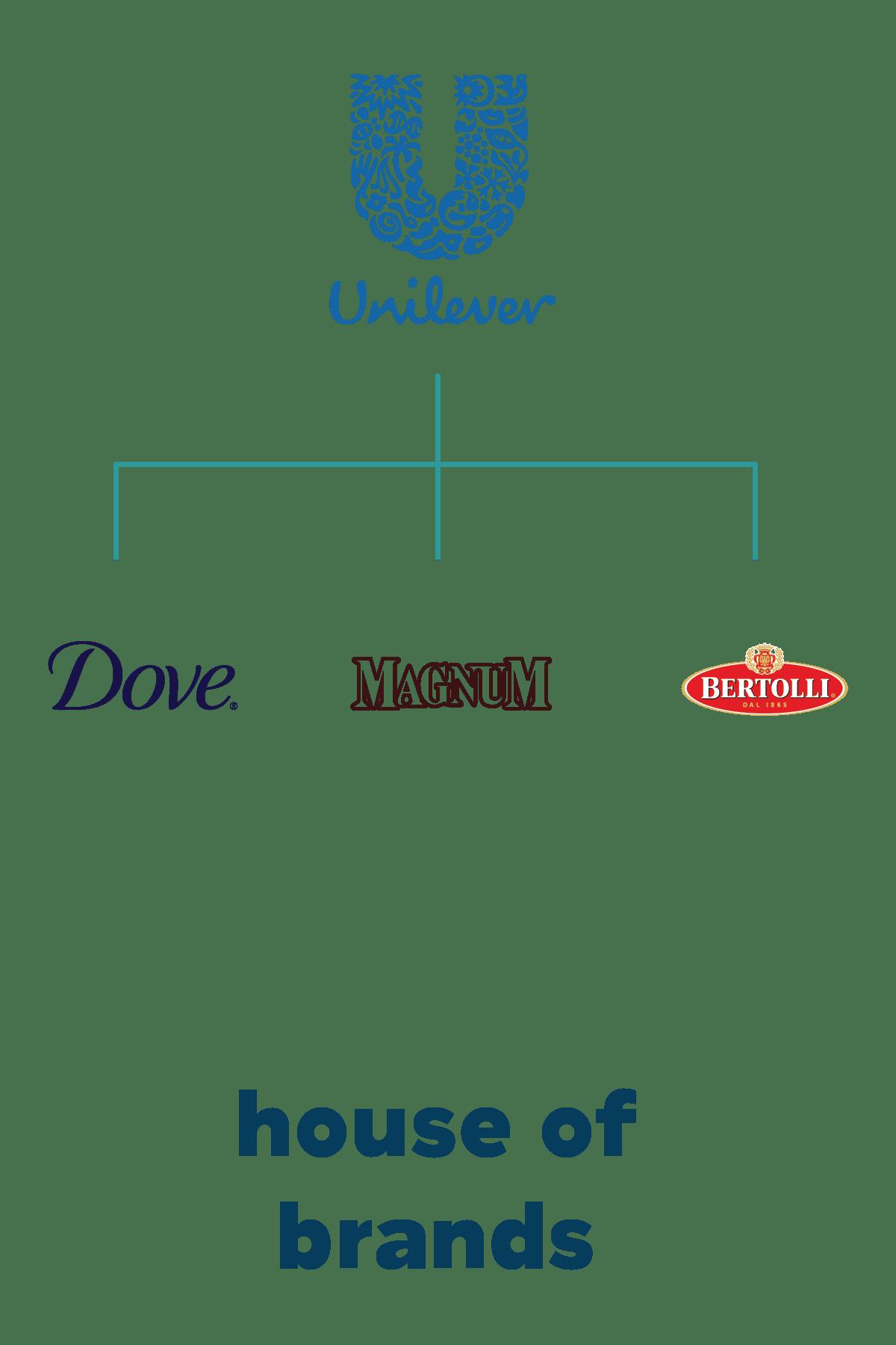 voorbeeld house of brands unilever