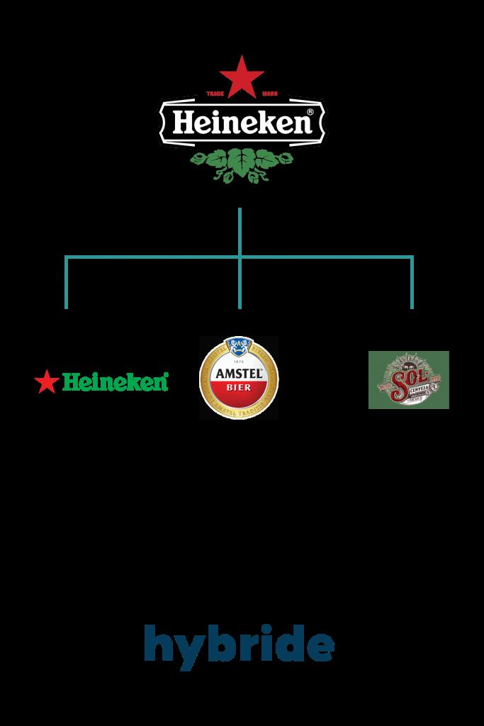 voorbeeld hybride merkarchitectuur